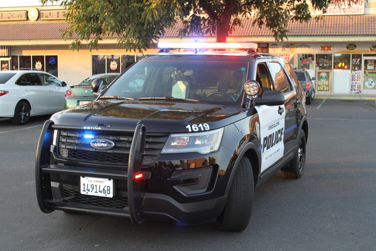 Escalon Police Department's Weekly Activity Log (06/03/18 – 06/10/18).
