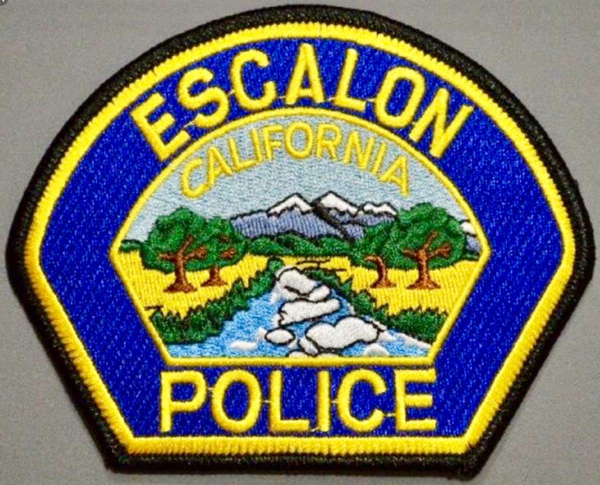 Escalon Police Department's Weekly Activity Log (01/21/19 – 01/27/19)