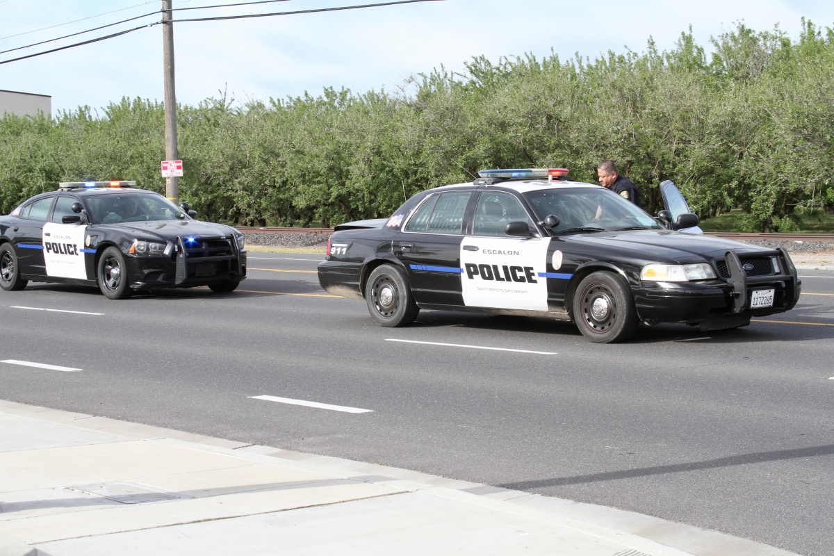 Escalon Police Department's Weekly Activity Log (04/08/19 – 04/15/19)